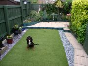 Ecosolve - Mrs Carters lawn with Super Verdeturf