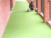Super Verdegrass Walkway at Parkstone Golf Club