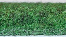Verde Pitch Top 11.80m X 0.25m