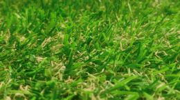Verde Patio Grass 3.50m x 1.00m