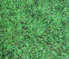 Verde Pitch Top 2.40m x 2.00m